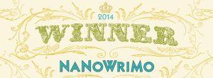 winner 2014 - web banner