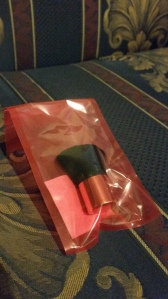 Image Description: a pink plastic bag with a small make-up/blush brush inside