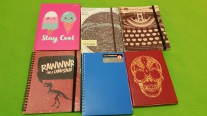 Image Description: there are six A5 sized notebooks in this picture. From left to right, there's a bright pink hardcover lined notebook with two pictures of ice-creams with faces on the front with the heading 'Stay Cool'. Underneath the pink notebook is a notebook with a dark-red cover, a skeleton of a dinosaur (most likely a velociraptor) with the speech bubble above the dinosaur skeleton displaying text 'Rawwwr I'm a Dinosaur'. To the right pink book, there is a notebook with a black elastic band on the cover keeping it closed and on the cover are diagrams of star constellations from the Northern Hemisphere. Beneath that notebook, there is a plain peacock-blue notebook I bought from Coles Supermarket. To the right of the constellation notebook, there is a notebook with a black and white close-up picture of a typewriter. There's a black elastic band across the vertical-length of the cover and the words 'some inspiring shit written inside here' displayed at the top. Beneath the black and white typewriter notebook, there is a notebook with a red faux-leather cover and a gold Día de Muertos (Day of The Dead) skull design on the front cover.